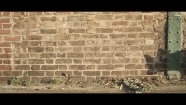 Skrillex ft. Sirah — Bangarang видео